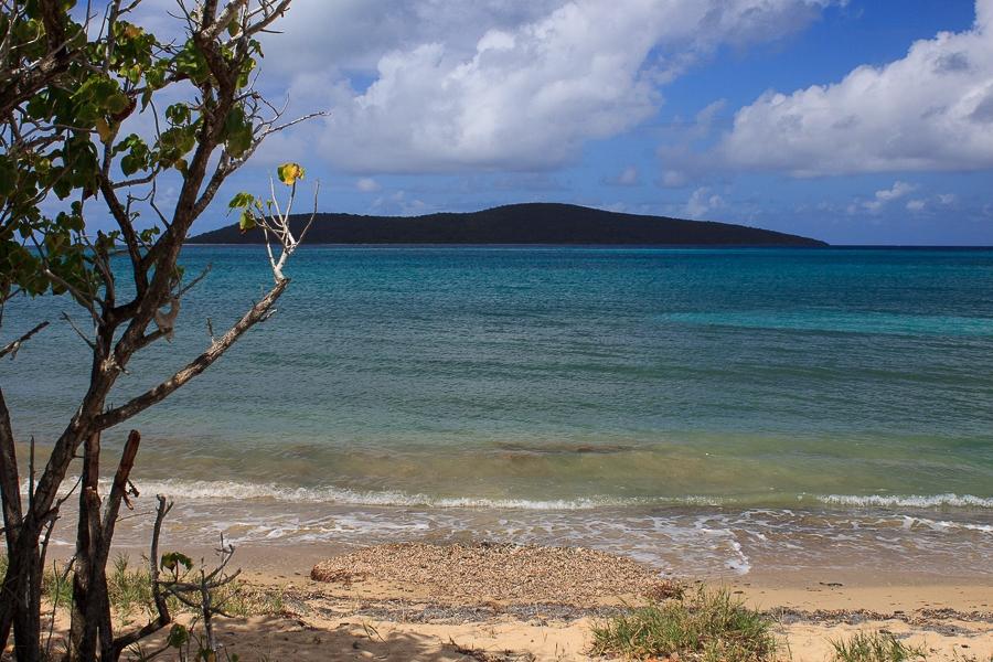 Solitude Beach Buck Island